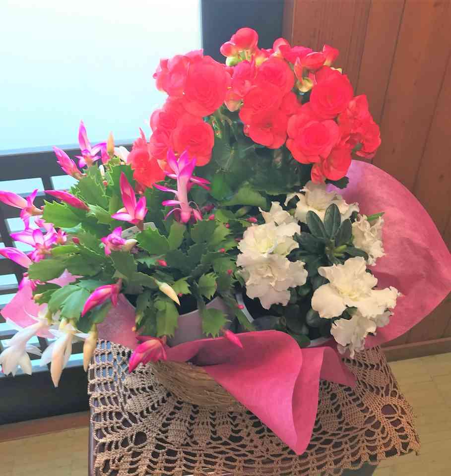 20.11.8-flower-no.125resized